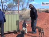 Reportour : Australie, Ayers Rock et aborigènes