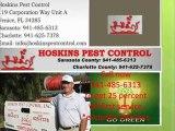 Hoskins pest control Venice FL Hoskins Pest Control Termite