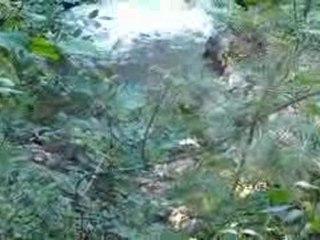 Cascades de Murel 1020273