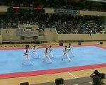 taekwondo démo équipe coréenne à coubertin part 2