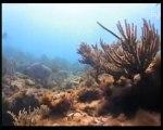 Atlantide : Mythe ou réalité ? (5)