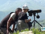 Les Accompagnateurs en Montagne et les marmottes
