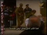 islam - holocaust of muslims live - palestine