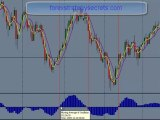 The Best Forex trading system courses