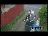 Parodie : Le chat mis à la poubelle prend sa revanche