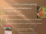 Tucson Landscapers want to help you with your Landscaping