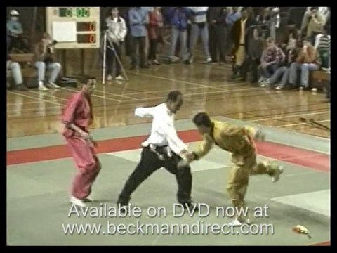 Martial arts kung fu; demonstrations of kung fu by experts