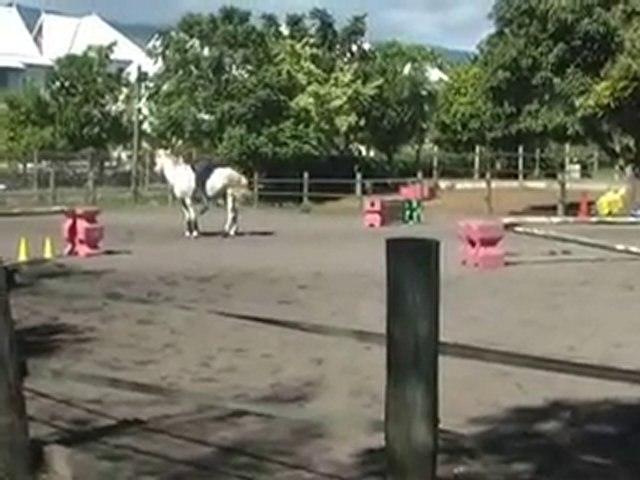 chute de cheval version judo!