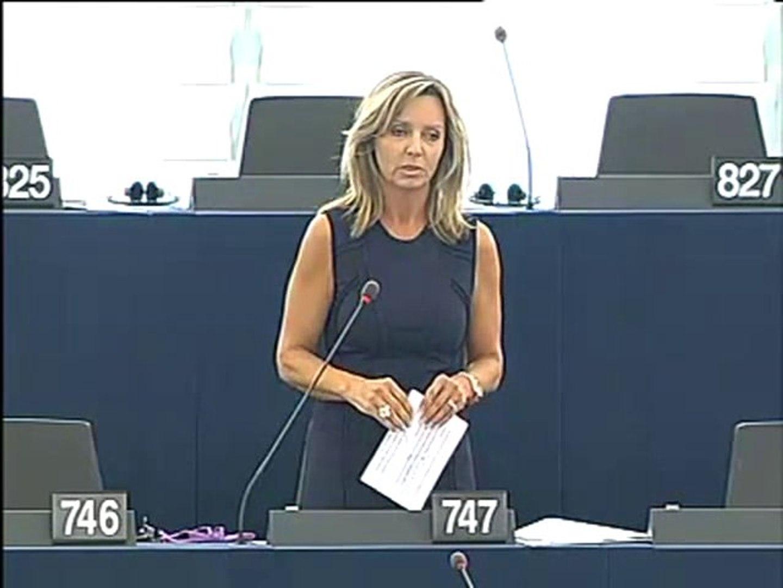 Frédérique Ries on Israeli NGOs