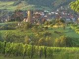 Commanderie des Nobles Vis du Jura et du Comté