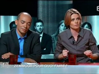 Eric Zemmour : une supercherie française ? - 10/09/10