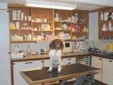 Dyrehospital Fyn Assens Assens Dyreklinik