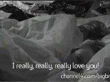 I Really Really Really Love You