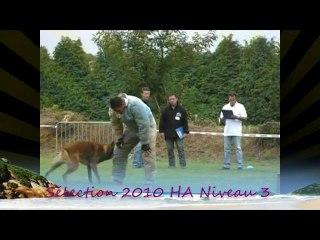 Sélection Nationale 2010 HA niveau 3 (partie 3)