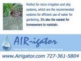 Underground Drip Irrigation