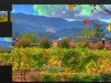 Sonoma County Wine Tours | Sonoma Wine Tasting Tours Napa