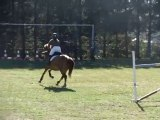 démonstration CSO fête du cheval