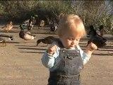Raphaël et les canards - premiers pas !