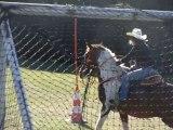 Fête du cheval à Malmont - démonstration équitation western