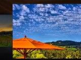 Napa Wine Tour Limo | Sonoma Wine Tasting Tour | Elite Limo