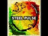 STEEL PULSE Reggae Sun Ska 2010 www.reggae-Est.fr