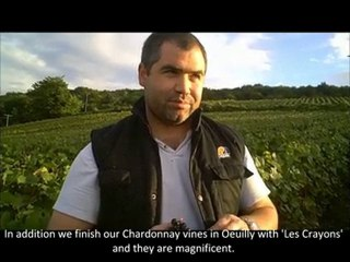 Champagne Tarlant Vintage 2010 - Day 7