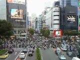Carrefour de Shibuya à Tokyo.