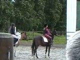 POUETTE RELAIS SAUT d'obstacles à la fete du cheval