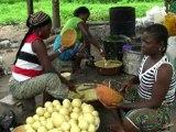 Ecotourisme au Bénin : Fabrication du savon ballon à Ouéssè (Département des Collines, Bénin)