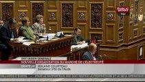 SEANCE,Séance - projet de loi sur la Nouvelle Organisation du Marché de l'Electricité