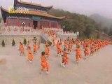 Demo de kung-fu