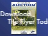 Georgia Land Auction, Online Only Auctions, Worth County