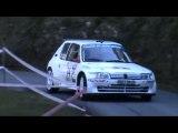 Rallye Mauves - Plats 2010