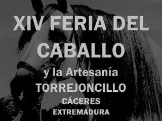 XIV FERIA DEL CABALLO (TORREJONCILLO)
