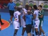 Nîmes perd sur le fil contre Nantes (Handball D1)