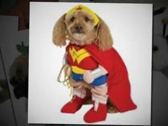 Dog halloween pet costume