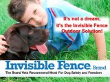 Invisible fence collar Houston