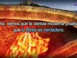 La Biblia es verdadera.[Iglesia de Dios,Ahnsahnghong