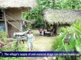 Malaria stalks Myanmar's poor as healthcare crumbles