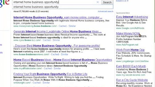 Internet Home Business Opportunity Success - video dailymotion