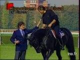 L'homme défie le cheval