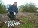 HüR MoL Levrek avı
