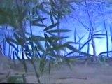 film4vn.us_TuyetTheSongKieu17_chunk_1