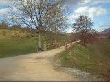Randonnée voie verte 1 Mars 2010 VOIE VERTE