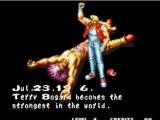 Fatal fury 2: Terry Bogard