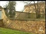 [Les forêts de Versailles et de Boulogne cinq ans après la tempête]