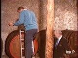 Les vins et vignobles des Côtes du Rhône