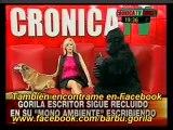 Anabela Ascar entrevista por 2º vez al gorila escritor. P 1