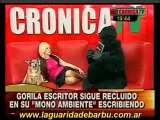 Anabela Ascar entrevista por 2º vez al gorila escritor. P 2