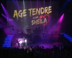 "Sheila ""Adios Amor"" DVD Âge Tendre saison 5 enfin disponible"